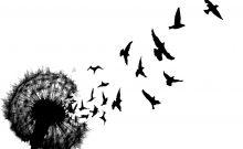 Dandelion birds (8x7cm)