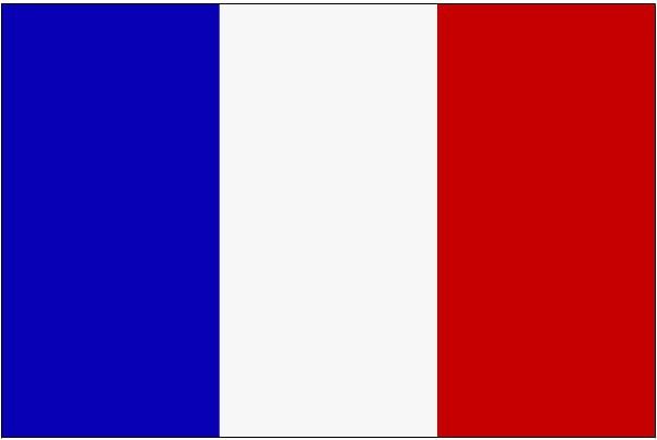 FLAG-FRANCE(MED5X3CM)