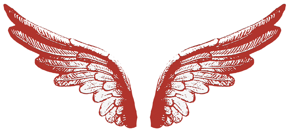 Fleet Wings (8x4cm)