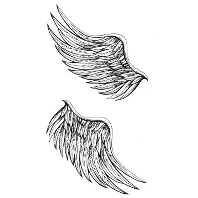 Fleet wings