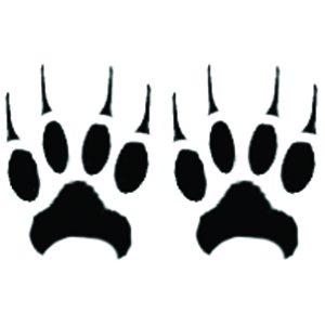 Celeb Paws