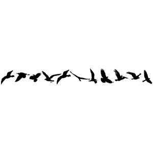 BirdsChain2