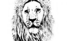 Finger Lion x2